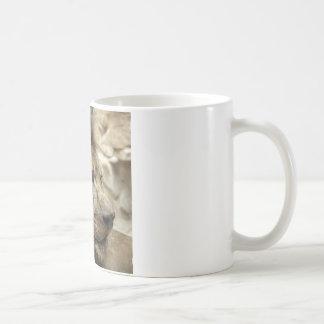 Det är bra att vara kungen kaffemugg