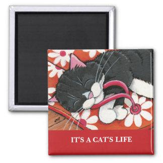 Det är en katt magneten för konst för katten för