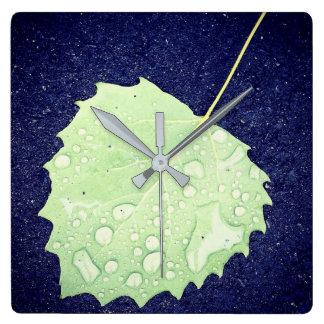 Det daggiga löv kvadrerar väggen tar tid på fyrkantig klocka
