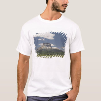 Det högsta berg med betar av betande nötkreatur t-shirts