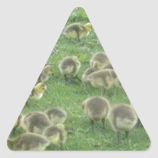 Det keliga förråd triangelformat klistermärke