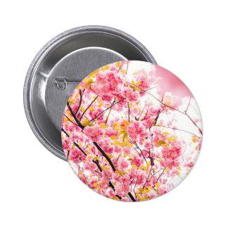 Det ljusa japanska rosa körsbäret blomstrar Sakura Standard Knapp Rund 5.7 Cm