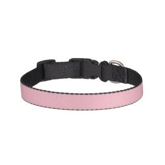 Det mjuka rosahusdjuret förser med krage för hund- halsband husdjur