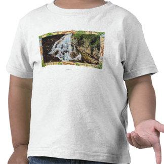 Det Ossipee berg parkerar beskådar av möhippa skyl T Shirts