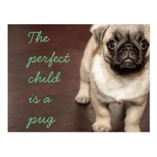 Det perfekta barnet är en mops vykort