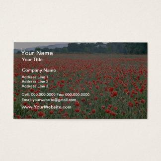 Det röda vallmofält, Kent, England blommar Visitkort