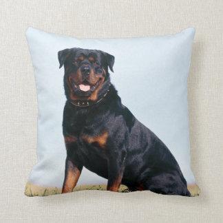 Det Rottweiler porträtt kvadrerar dekorativ kudde
