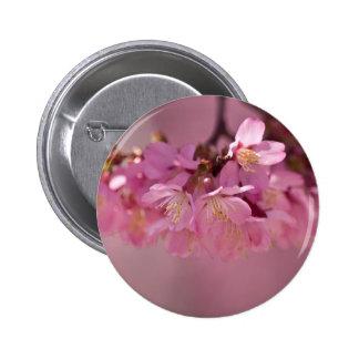 Det Sakura körsbäret blomstrar den delikat rosa Standard Knapp Rund 5.7 Cm