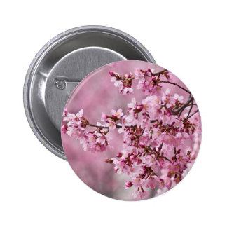 Det Sakura körsbäret blomstrar pastellfärgade rosa Standard Knapp Rund 5.7 Cm