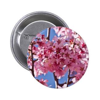 Det Sakura körsbäret blomstrar röda stjärnor Standard Knapp Rund 5.7 Cm