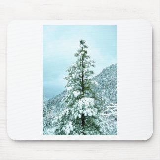 Det Sedona berg landskap snö täckte träd Musmatta