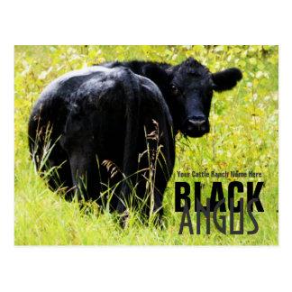 Det svart Angus råd - tillfoga ditt Vykort