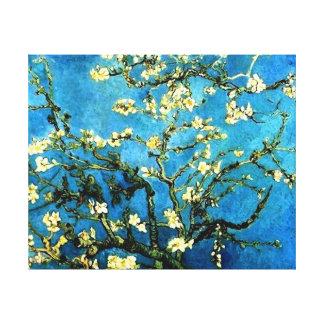Det Van Gogh mandelträd blomstrar kanfas Canvastryck