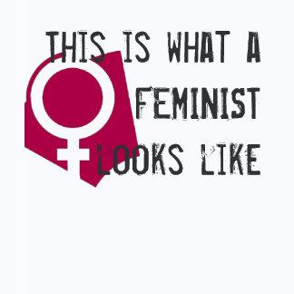 Feminism T-shirts