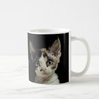 Devon Rex kattunge Kaffemugg