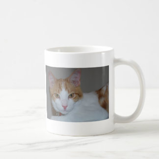 dexter kaffemugg