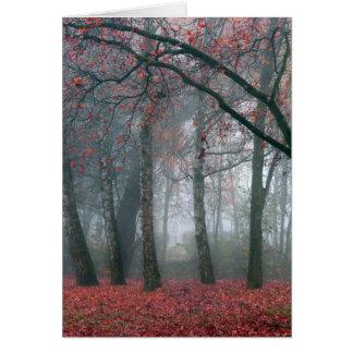Dimma i höstskog med röda löv hälsningskort