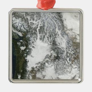 Dimma och insnöat den Stillahavs- northwesten Julgransprydnad Metall