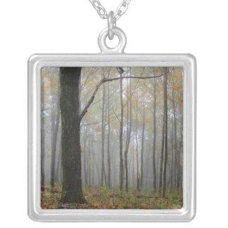 Dimma till och med trädhalsbandet silverpläterat halsband