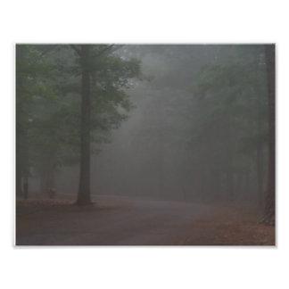 Dimmig morgon fototryck