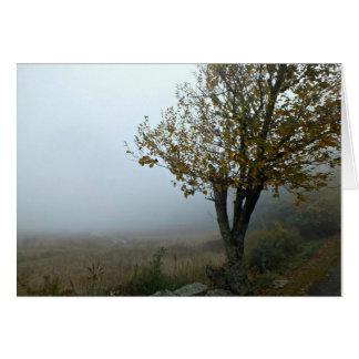 Dimmig morgon på berg sjölogen, VA Hälsningskort