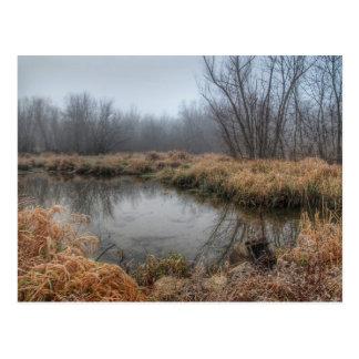 Dimmig morgon på en Marsh Vykort