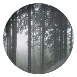 Dimmig skog mig vildmark för Natur-lover'jorddag Tallrikar