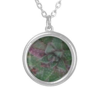 Dimmig suckulent, grön lila, natur, floraväxt silverpläterat halsband