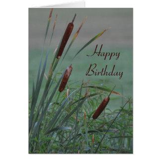 Dimmigt Cattailsfödelsedagkort Hälsningskort