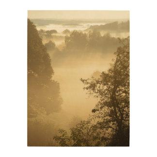 Dimmigt lantligt landskap trätavla