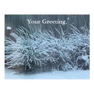 Dina vykort för Wisteria för hälsningsnö dolda