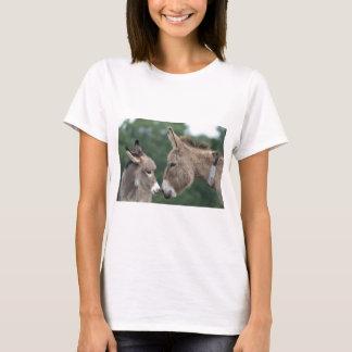 Dinky åsna t-shirts