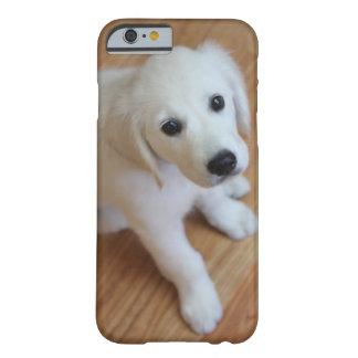 ditt favorit- älsklings- foto på ett fodral för barely there iPhone 6 skal