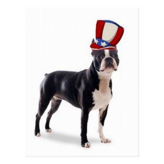 Ditzy Dogs~Original Postcard~Boston Terrier Vykort