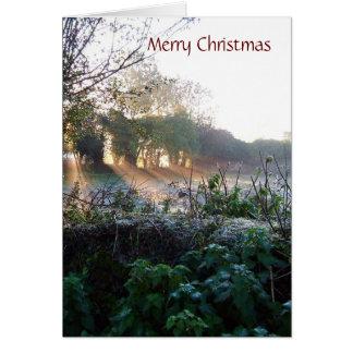 DIVERSE kort för 003 julafton, skräddarsy god jul