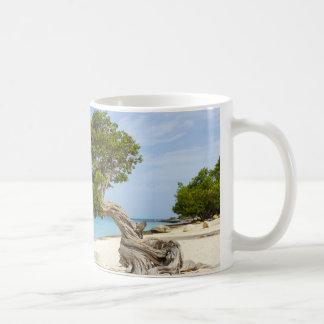 Divi Divi träd på den karibiska ön av Aruba Vit Mugg