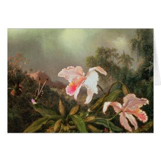 Djungelorchids och hummingbirds, 1872 hälsningskort