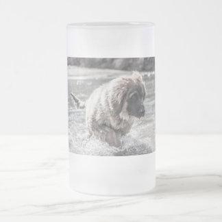 Djupfryst Leonberger Frostat Ölglas