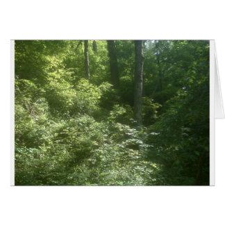djupt i skogen hälsningskort