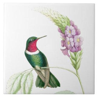 Djur för djurliv för Hummingbirdfågelblommor blom- Kakelplatta