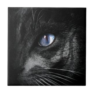 Djur för Look för stirrande för kattkattungeöga Kakelplatta