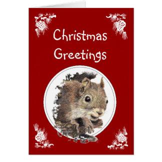 Djur humor för rolig julekorre hälsningskort