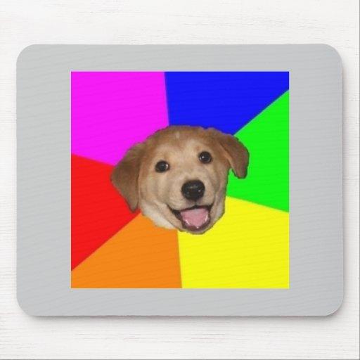Djur Meme för rådgivninghundrådgivning Mus Matta