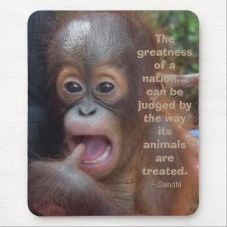 Djur orangutan för älskareGandhi Quotation Musmatta