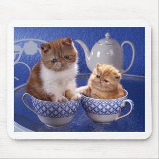 djur vänskap mus matta