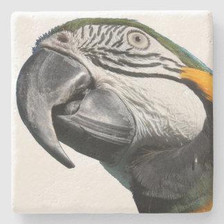 Djurliv för djur för Macawpapegojafåglar Underlägg Sten