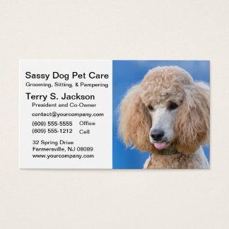 Djuromsorg visitkort för Sassy hund