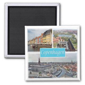 DK * Danmark - Köpenhamn Magnet
