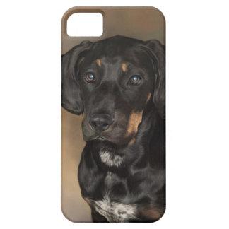 Doberman iPhone 5 Skydd