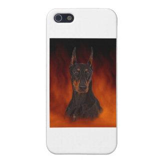 Dobermanen iPhone 5 Cases
